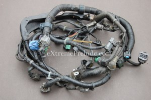 OEM H22a4 Engine Harness